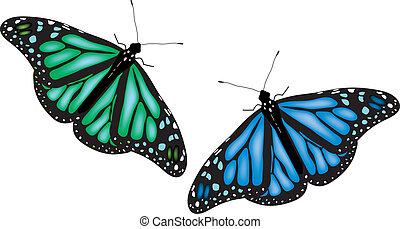 vlinder, kleurrijke, witte achtergrond