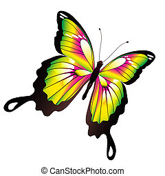 vlinder, mooi, vrijstaand, witte , kleur