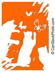 vlinder, poezen, drie