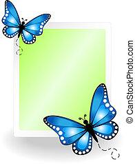 vlinder, prikbord