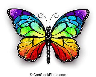 vlinder, regenboog, vorst