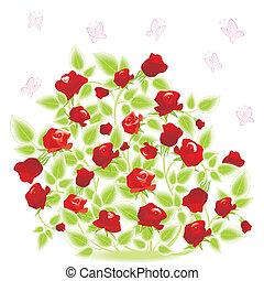 vlinder, roos struik