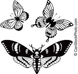vlinder, silhouettes, vector, set