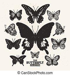 vlinder, verzameling