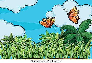 Hart vlinder hemel wolk hart vlinder hemel for Vliegen in de tuin