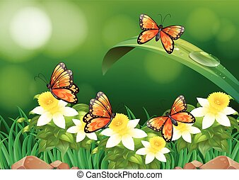 Zon vlinder naar buitenshuis vliegen mooi naar for Vliegen in de tuin