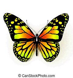 vlinder, vrijstaand, gele, col