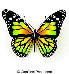 vlinder, vrijstaand