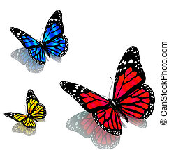 vlinder, witte , drie