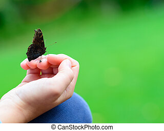 vlinder, zittende , hand, kind