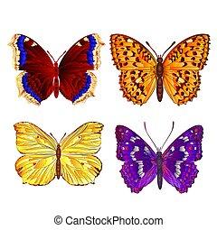 vlinders, verschieden, vector.eps