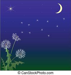 vlucht, paardenbloem, hemel, tegen, nacht