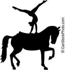 voûtes, silhouette, cheval