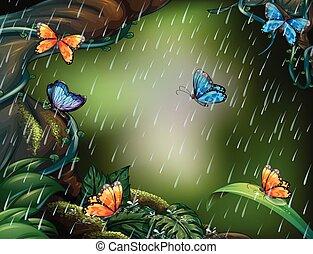 voando, cena, chuva, borboletas, profundo, floresta