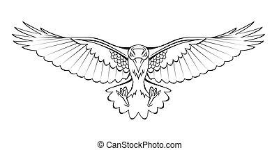 voando, corvo