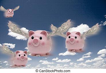 voando, porcos