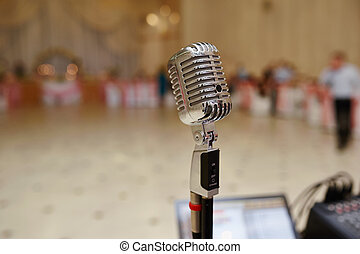 Vocal Microphone on Wedding Celebration