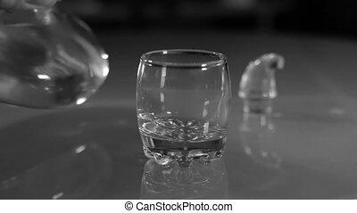 Vodka shot Decanter - Vodka shot alcoholism decanter 1