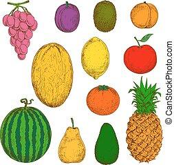voedingsmiddelen, sappig, ontwerp, vruchten, fris, dranken