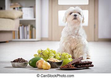 voedingsmiddelen, vergiftig, weinig; niet zo(veel), dog, hem