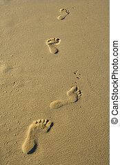 voet, Afdrukken