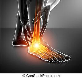voet, enkel, mannelijke , pijn