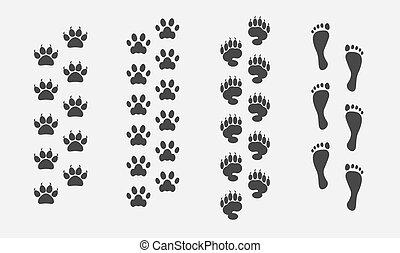 voet printen, vector, set, dieren