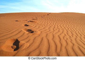 voet printen, zand, woestijn