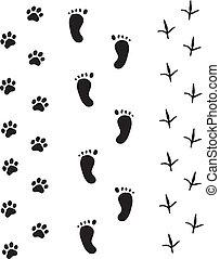 voetafdruk, witte