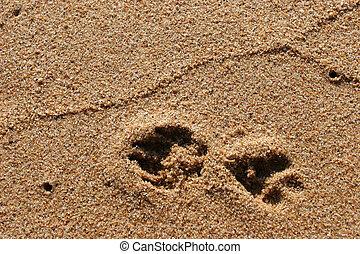 voetafdruk, zand strand