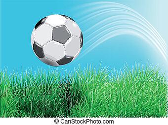 voetbal, groen gras