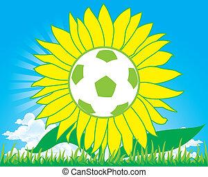 voetbal, zonnebloem