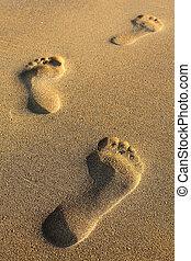 voetsporen, in, zanderig