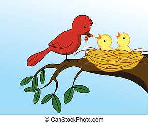 vogel, fütterung, sie, baby
