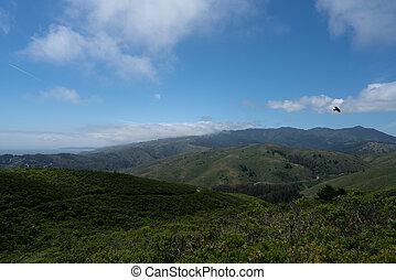 vogel, grassig, heuvels, wolken, horizon, straat, dramatisch, natuur