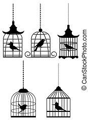 vogel, in, käfig
