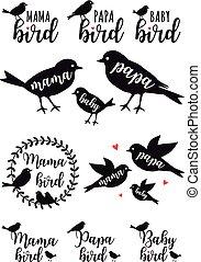 vogel, set, papa, vector, mama, baby