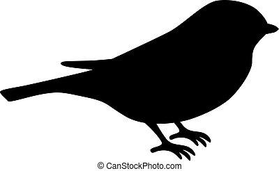 vogel, silhouette, tit