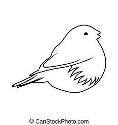 vogel, skizze