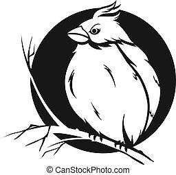 vogel, zweig