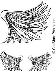 vogelflügel