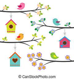 vogels, en, birdhouses., vector, set