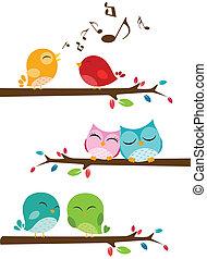 vogels, het zingen, op, de, tak