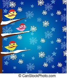 vogels, kerstmis