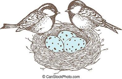 vogels, nest, eitjes