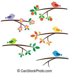vogels, op, takken