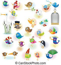 vogels, set
