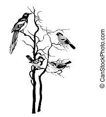 vogels, silhouette, op wit, achtergrond, vector, illustratie