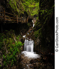 Vogelsang Gorge in Upper Austria on a cloudy day in summer. ...