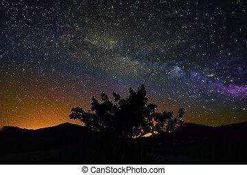 voie lactée, sur, a, clair, été, nuit